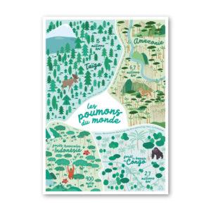 Affiche enfant grandes forêts polaires et tropicales