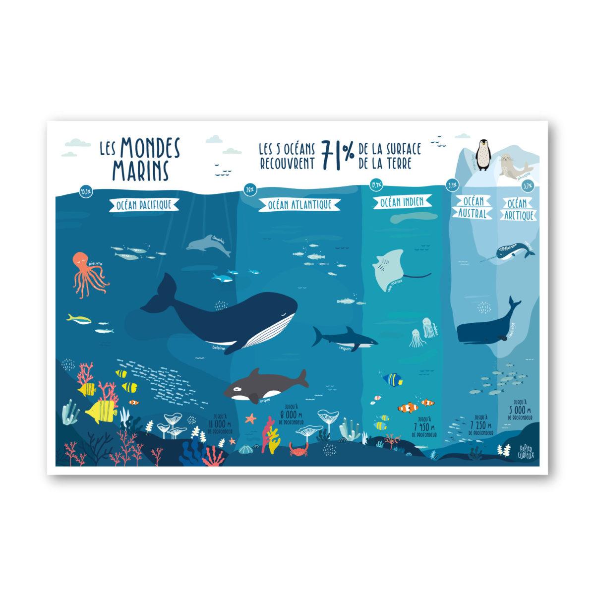 Affiche illustration enfant océans mer pacifique atlantique indien arctique austral