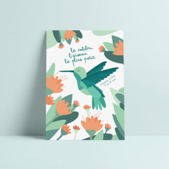 carte postale colibri oiseau illustration enfant