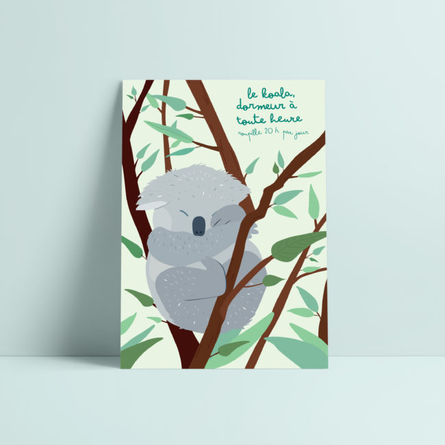 carte postale koala illustration enfant