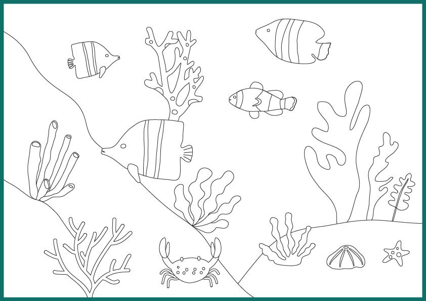 Coloriage ocean poissons