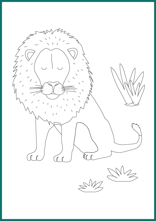 coloriage animaux lion
